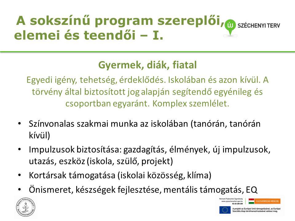 A sokszínű program szereplői, elemei és teendői – II.