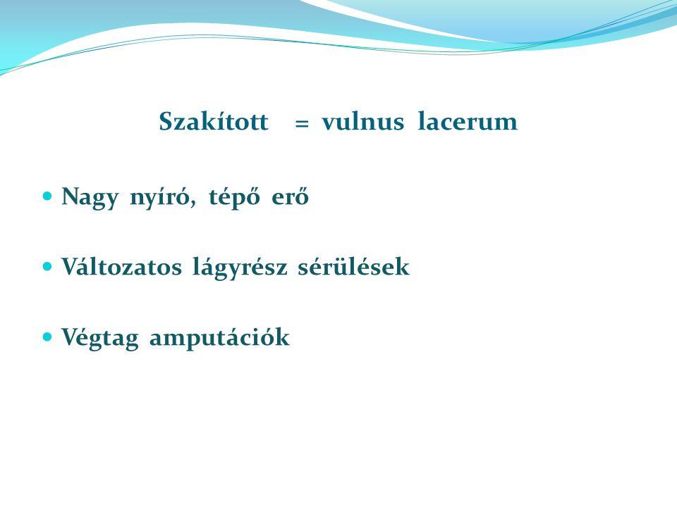 Szakított = vulnus lacerum Nagy nyíró, tépő erő Változatos lágyrész sérülések Végtag amputációk