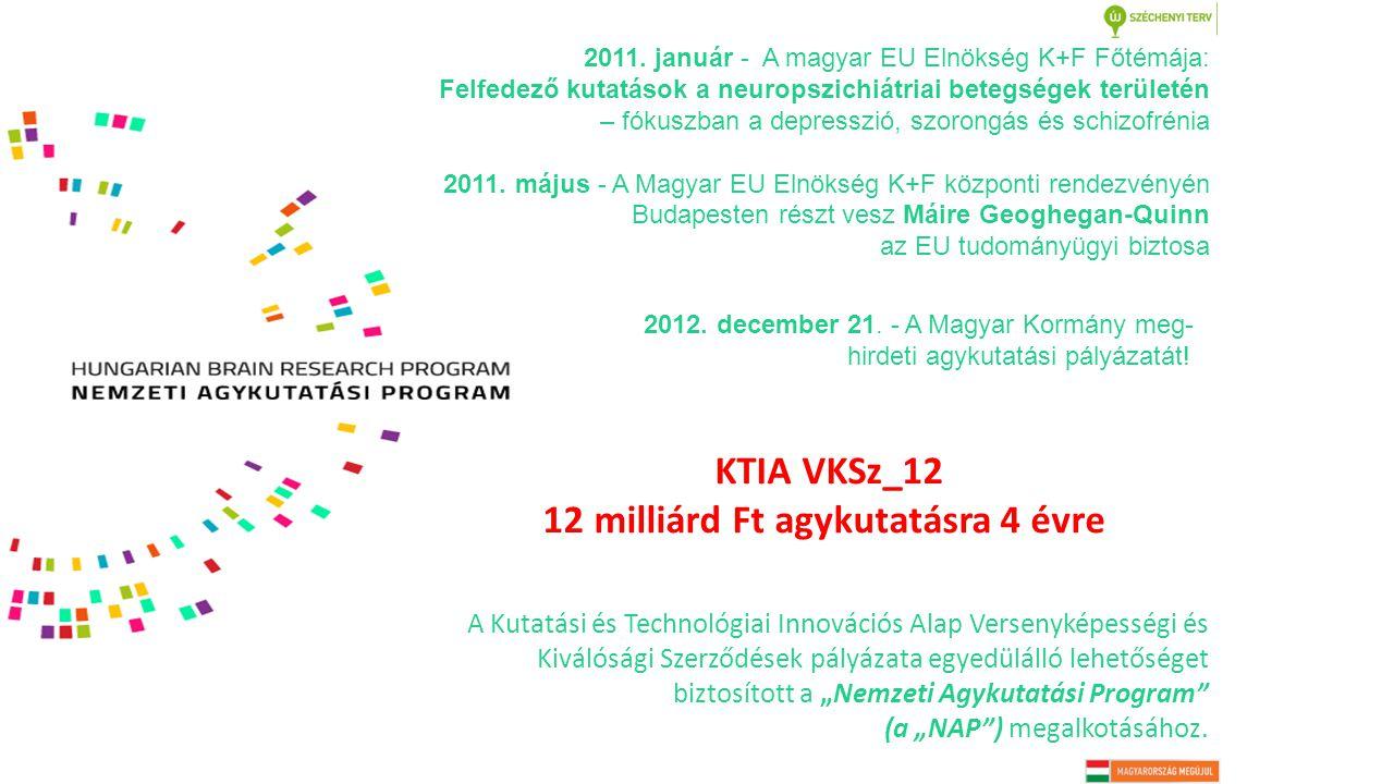 """KTIA VKSz_12 12 milliárd Ft agykutatásra 4 évre A Kutatási és Technológiai Innovációs Alap Versenyképességi és Kiválósági Szerződések pályázata egyedülálló lehetőséget biztosított a """"Nemzeti Agykutatási Program (a """"NAP ) megalkotásához."""