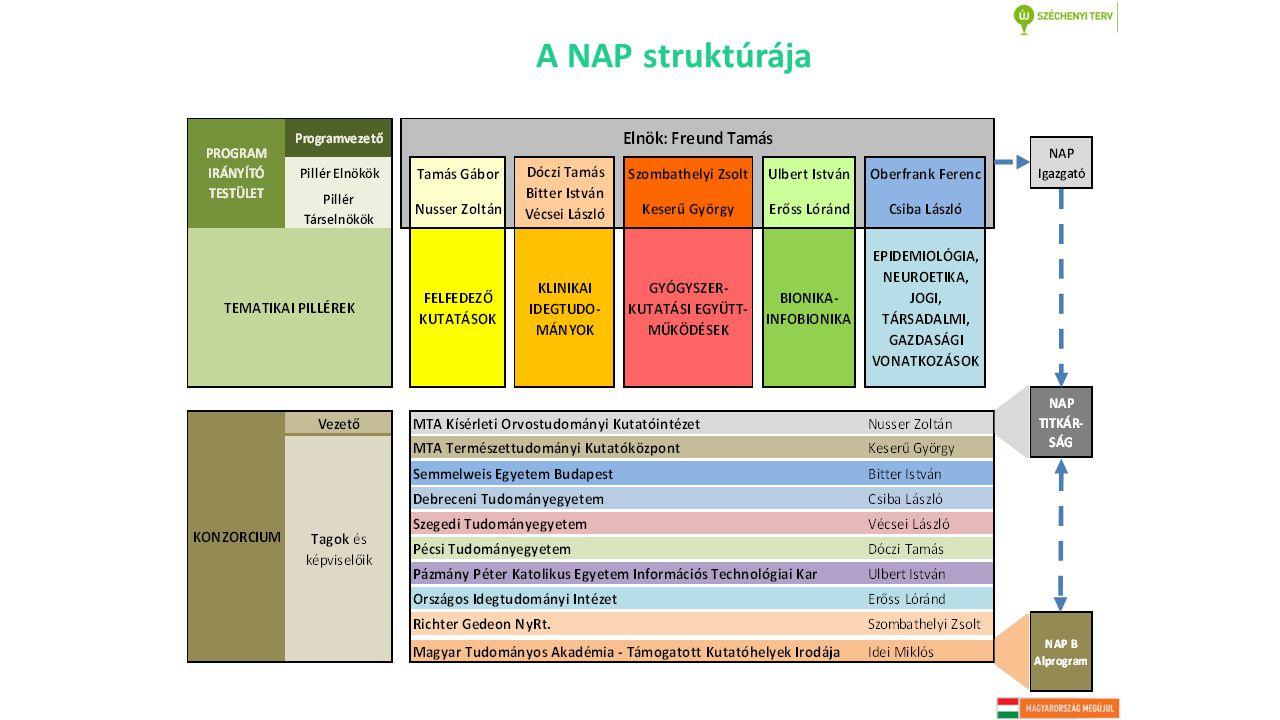 A NAP struktúrája