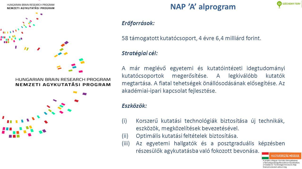 NAP 'A' alprogram Erőforrások: 58 támogatott kutatócsoport, 4 évre 6,4 milliárd forint. Stratégiai cél: A már meglévő egyetemi és kutatóintézeti idegt
