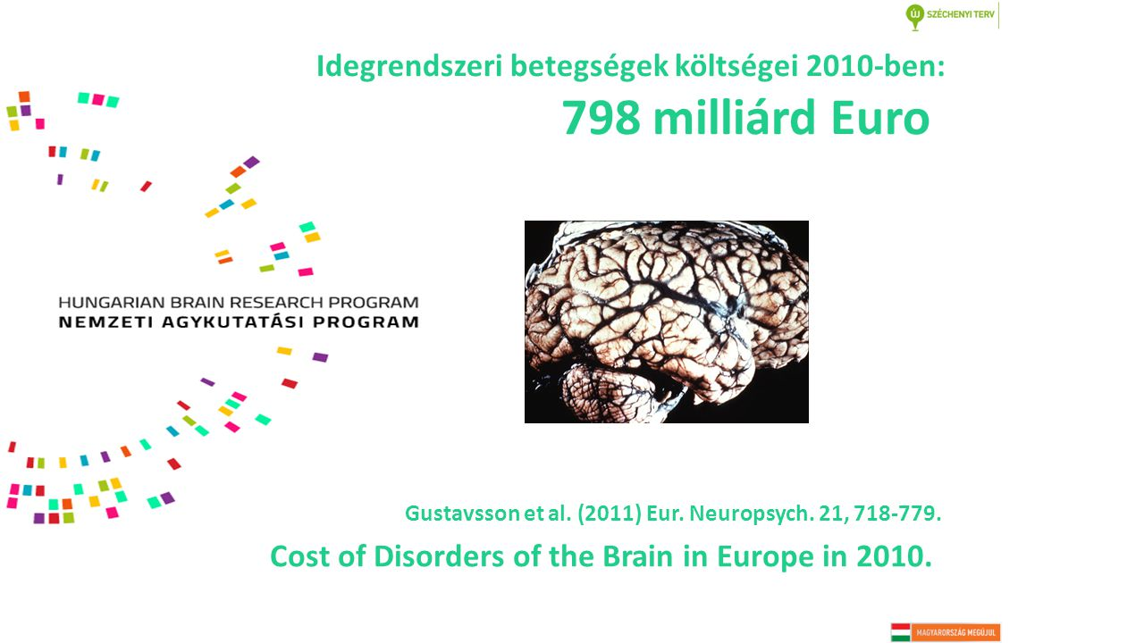 Cost of Disorders of the Brain in Europe in 2010. Gustavsson et al.