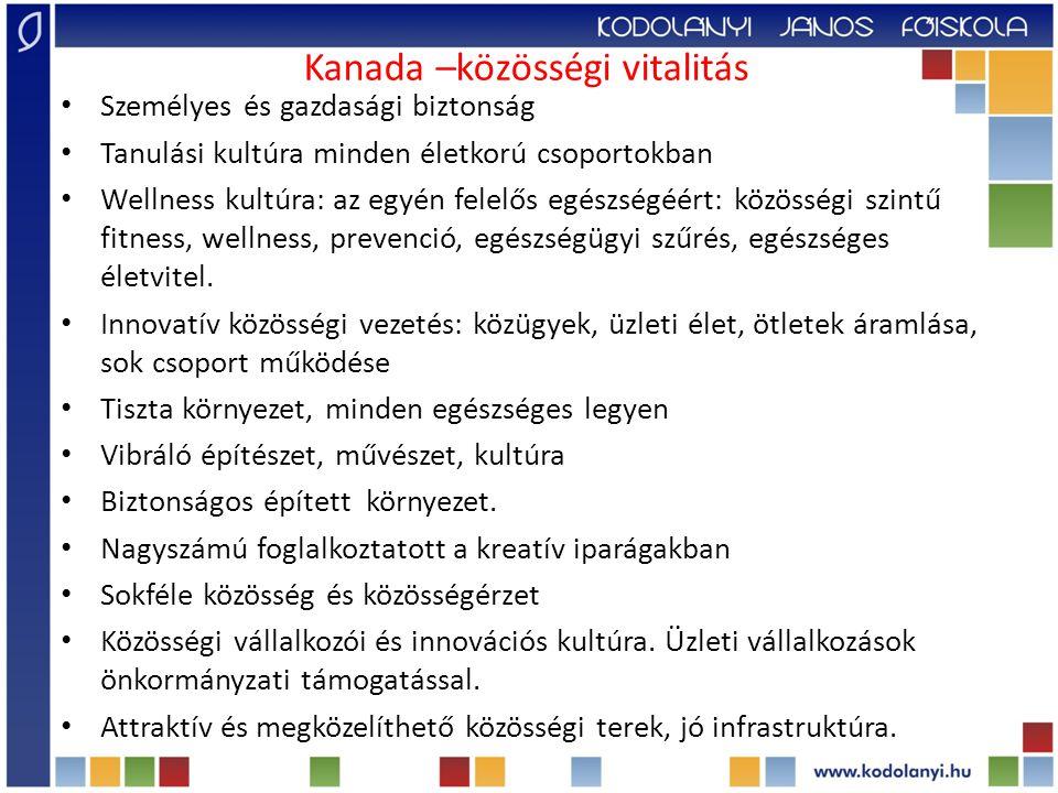 Kultúrával a jól-létért koncepció: a humán fejlesztés új modellje A kultúra funkciója: a társadalmi inkluzió, kapacitás építés, hálózatépítés a napi lakókörnyezetben (finn, ausztrál, kanadai) A kultúra és művészet része a szociális és egészségügyi szolgáltatásoknak (finn) A kultúra és művészet a munkahelyi egészség támogatója