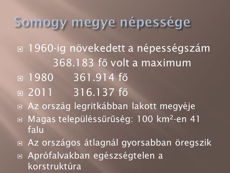  1960-ig növekedett a népességszám 368.183 f ő volt a maximum  1980 361.914 f ő  2011 316.137 f ő  Az ország legritkábban lakott megyéje  Magas t
