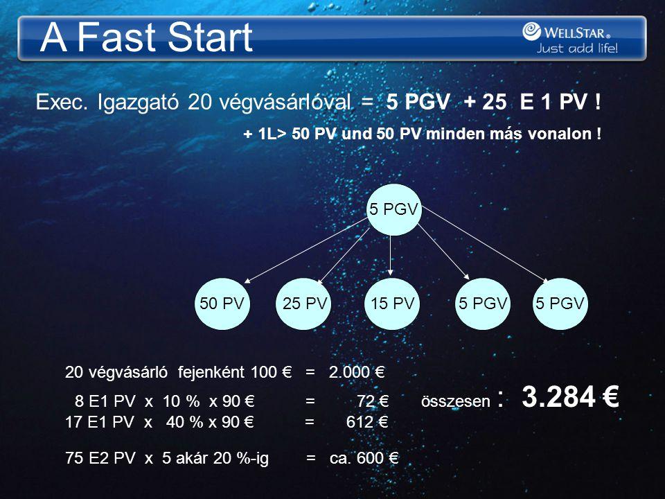 A Fast Start 5 PGV 15 PV 25 PV50 PV5 PGV Exec. Igazgató 20 végvásárlóval = 5 PGV + 25 E 1 PV ! + 1L> 50 PV und 50 PV minden más vonalon ! 20 végvásárl