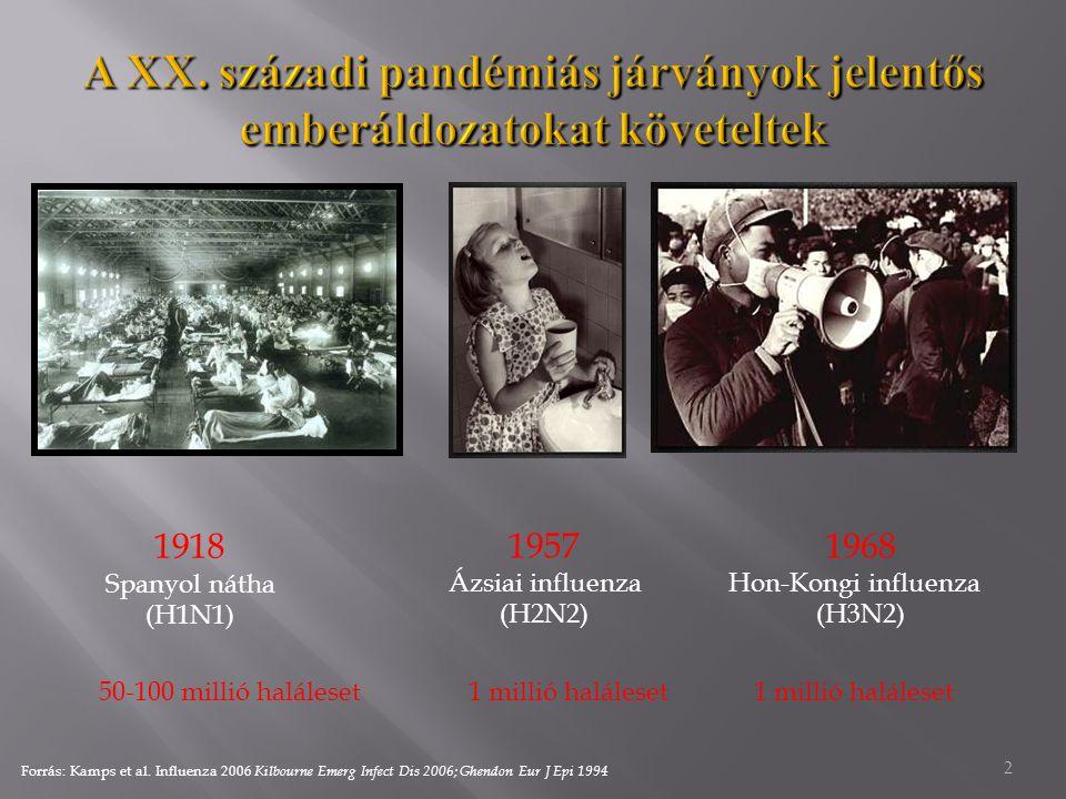 2 1918 Spanyol nátha (H1N1) 1957 Ázsiai influenza (H2N2) 1968 Hon-Kongi influenza (H3N2) 50-100 millió haláleset1 millió haláleset Forrás: Kamps et al.