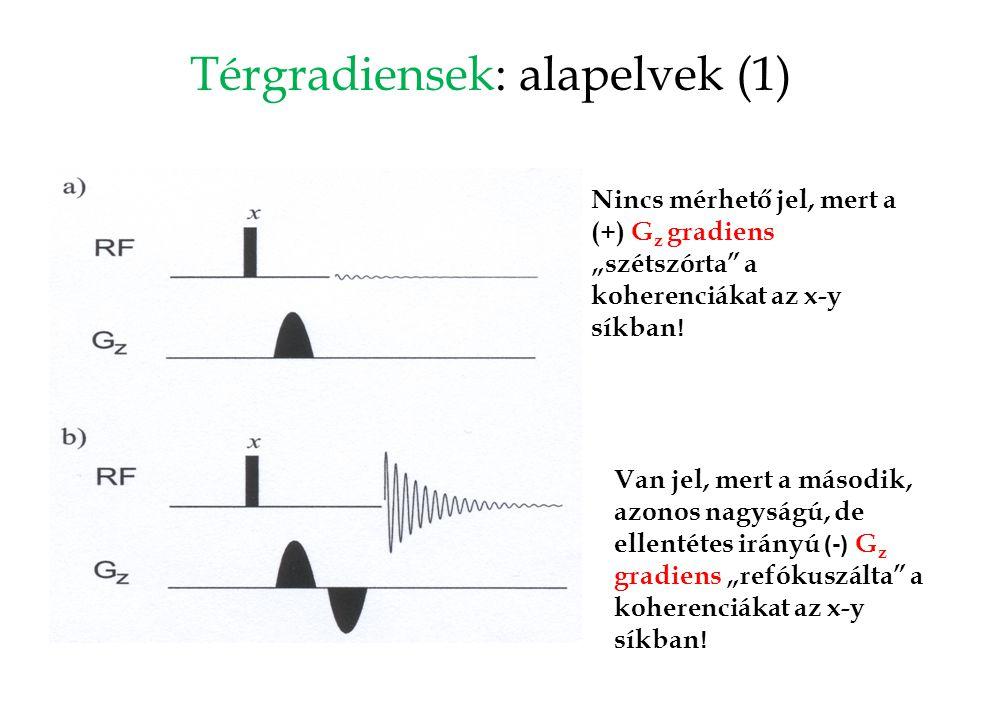 """Térgradiensek: alapelvek (1) Nincs mérhető jel, mert a (+) G z gradiens """"szétszórta"""" a koherenciákat az x-y síkban ! Van jel, mert a második, azonos n"""