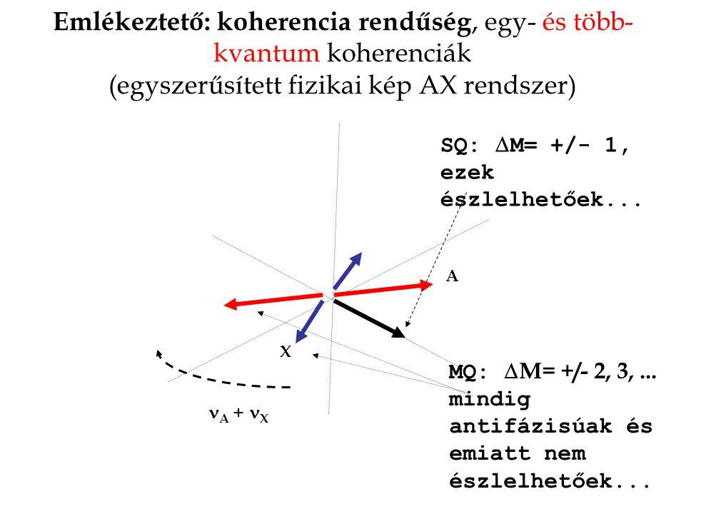 Emlékeztető: koherencia rendűség, egy- és több- kvantum koherenciák (egyszerűsített fizikai kép AX rendszer) A X A + X MQ:  M= +/- 2, 3,... mindig an