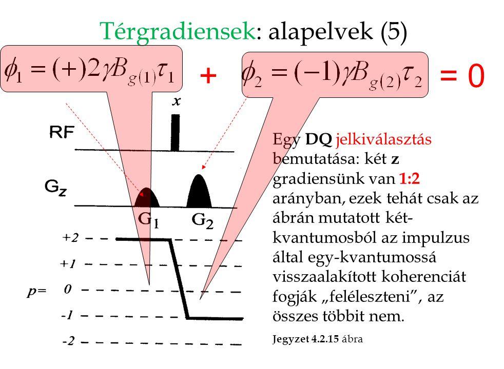 Térgradiensek: alapelvek (5) Egy DQ jelkiválasztás bemutatása: két z gradiensünk van 1:2 arányban, ezek tehát csak az ábrán mutatott két- kvantumosból