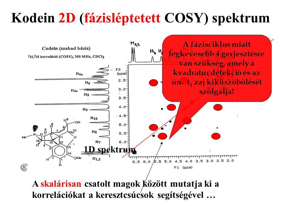 Kodein 2D (fázisléptetett COSY) spektrum A skalárisan csatolt magok között mutatja ki a korrelációkat a keresztcsúcsok segítségével … 1D spektrum A fá
