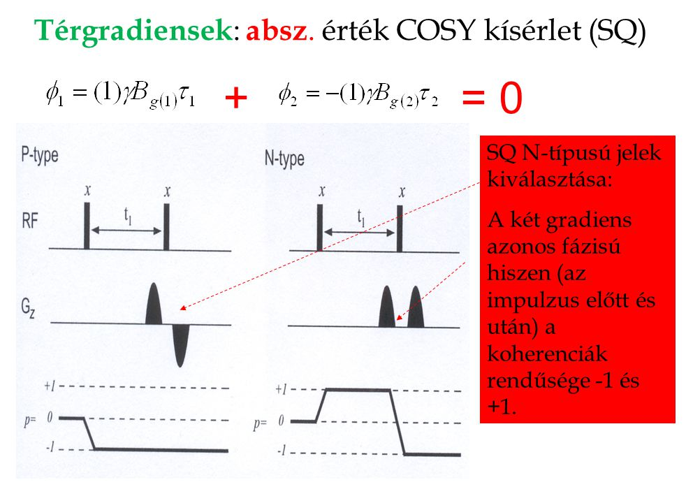 Térgradiensek : absz. érték COSY kísérlet (SQ) SQ P-típusú jelek kiválasztása: A két gradiens ellentétes fázisú hiszen mindkét (az impulzus előtt és u
