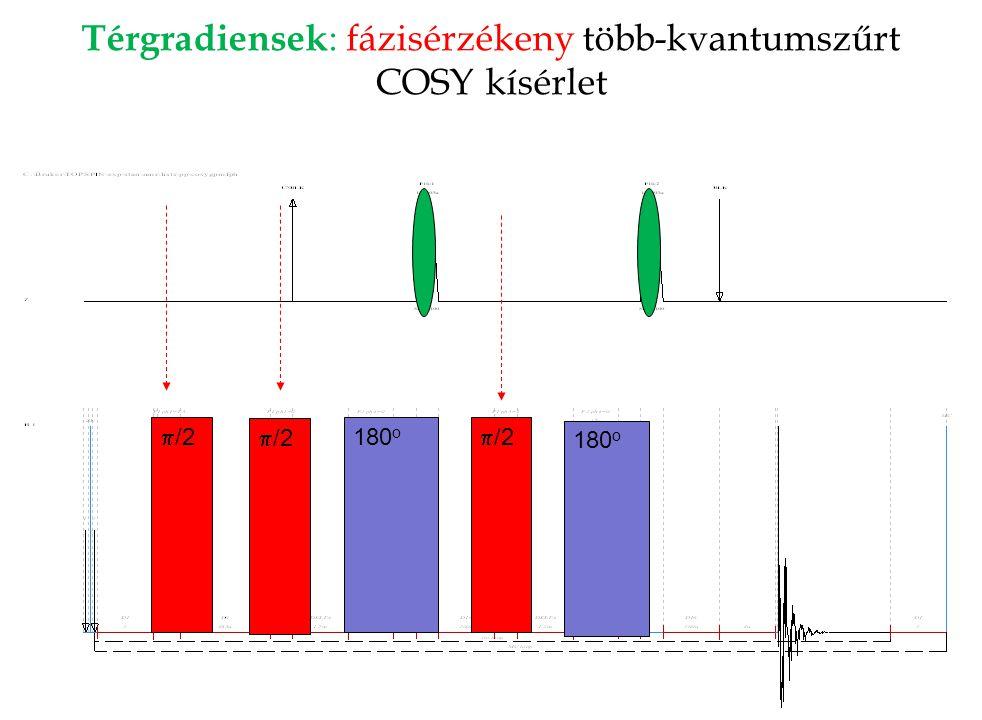 Térgradiensek : fázisérzékeny több-kvantumszűrt COSY kísérlet  /2 180 o  /2