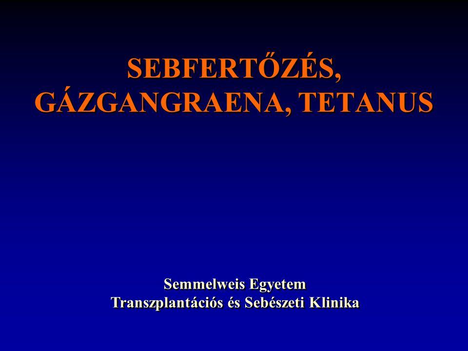 SEBFERTŐZÉS, GÁZGANGRAENA, TETANUS Semmelweis Egyetem Transzplantációs és Sebészeti Klinika