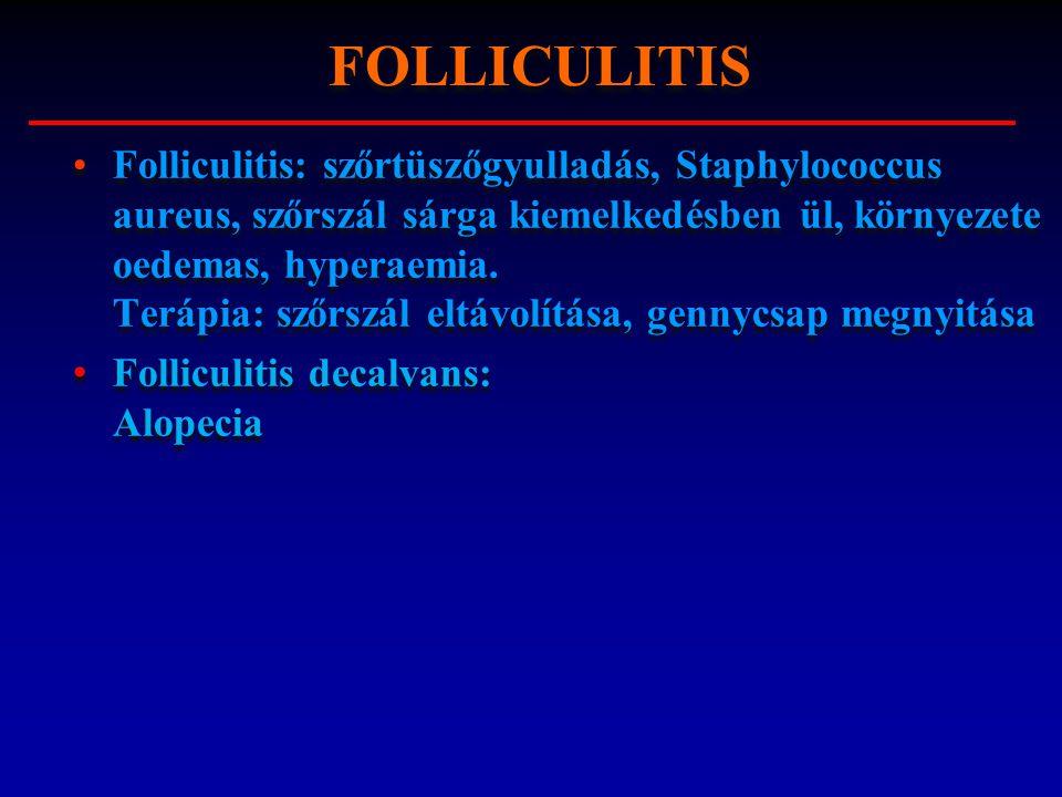 Folliculitis: szőrtüszőgyulladás, Staphylococcus aureus, szőrszál sárga kiemelkedésben ül, környezete oedemas, hyperaemia. Terápia: szőrszál eltávolít