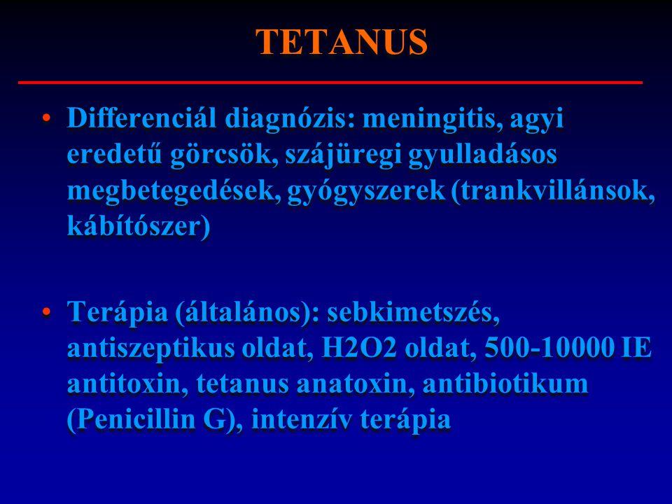 Differenciál diagnózis: meningitis, agyi eredetű görcsök, szájüregi gyulladásos megbetegedések, gyógyszerek (trankvillánsok, kábítószer) Terápia (álta