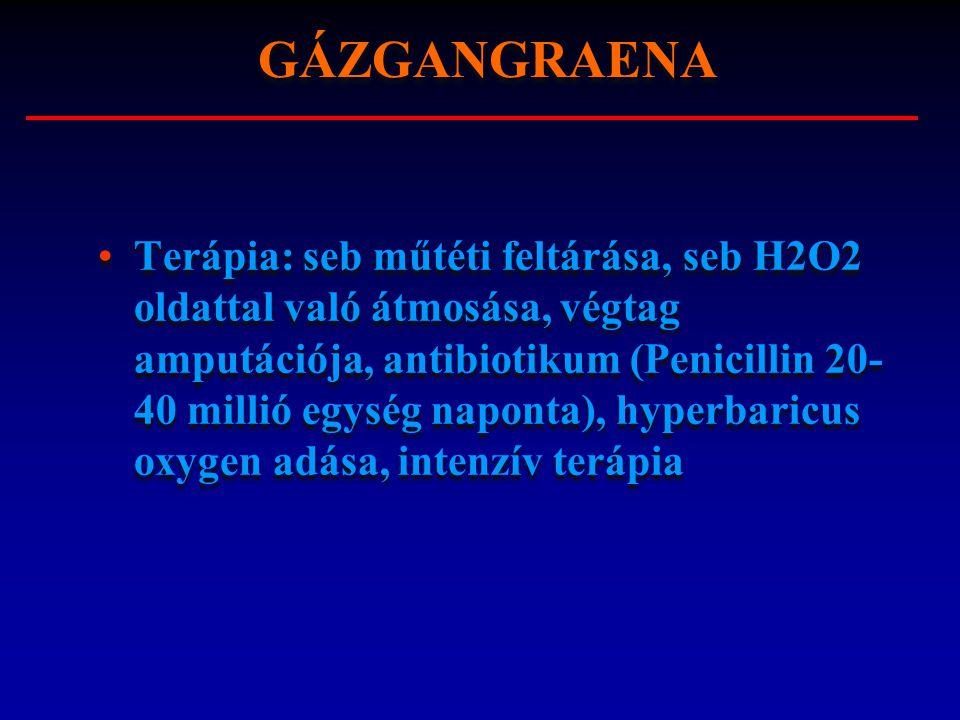 Terápia: seb műtéti feltárása, seb H2O2 oldattal való átmosása, végtag amputációja, antibiotikum (Penicillin 20- 40 millió egység naponta), hyperbaric