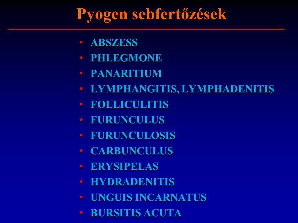 BURSITIS ACUTA: a nyálkatömlő akut gyulladása, bursa praepatellaris, bursa olecrani, baleset, krónikus gyulladás kiújulása.