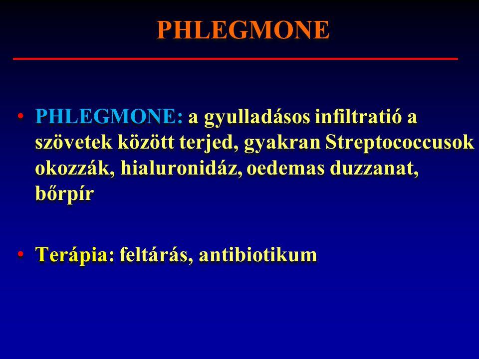 PHLEGMONE: a gyulladásos infiltratió a szövetek között terjed, gyakran Streptococcusok okozzák, hialuronidáz, oedemas duzzanat, bőrpír Terápia: feltár