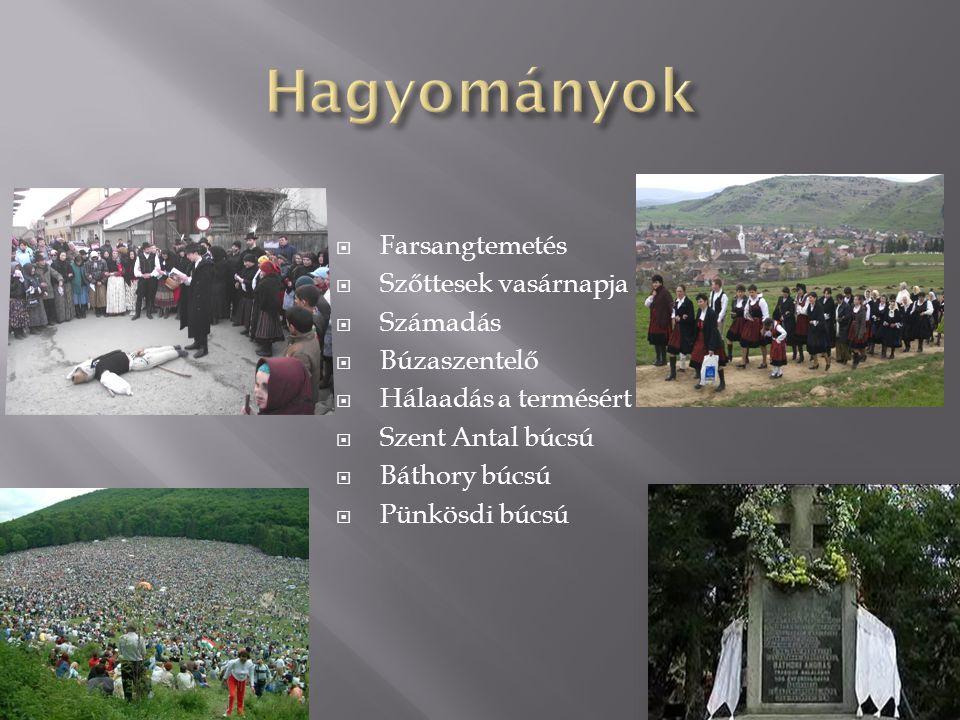 Henyeboroszlán (cserevirág) csak Csíkszentdomokoson található meg a Garados nevű dombon  A csengős kóró, ami szintén csak ebben a térségben fordul elő Pásztorbükkben
