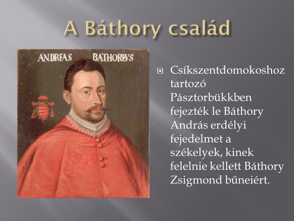  Csíkszentdomokoshoz tartozó Pásztorbükkben fejezték le Báthory András erdélyi fejedelmet a székelyek, kinek felelnie kellett Báthory Zsigmond bűneié