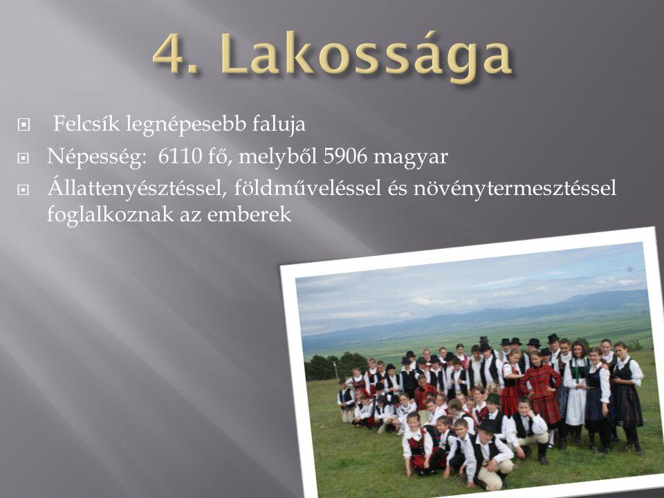  Felcsík legnépesebb faluja  Népesség: 6110 fő, melyből 5906 magyar  Állattenyésztéssel, földműveléssel és növénytermesztéssel foglalkoznak az embe