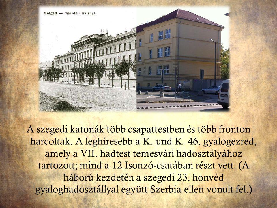 A szegedi katonák több csapattestben és több fronton harcoltak. A leghíresebb a K. und K. 46. gyalogezred, amely a VII. hadtest temesvári hadosztályáh