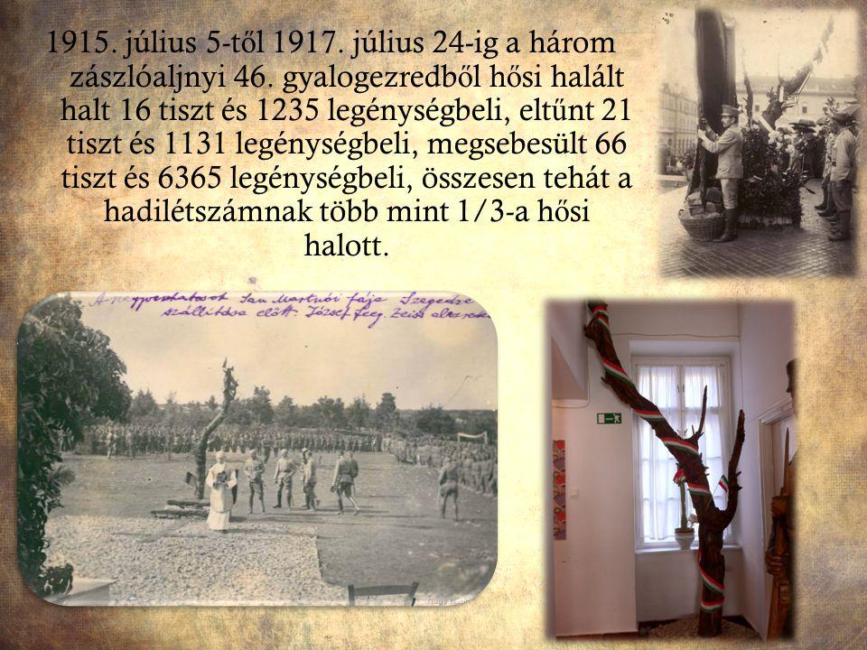 1915. július 5-t ő l 1917. július 24-ig a három zászlóaljnyi 46. gyalogezredb ő l h ő si halált halt 16 tiszt és 1235 legénységbeli, elt ű nt 21 tiszt
