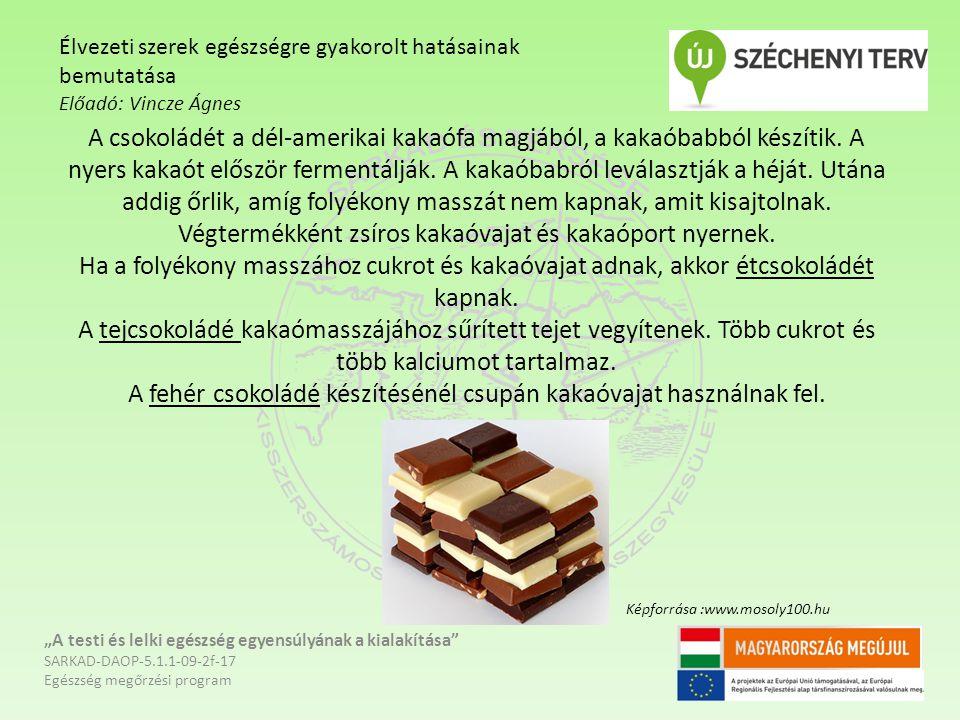 A csokoládét a dél-amerikai kakaófa magjából, a kakaóbabból készítik.