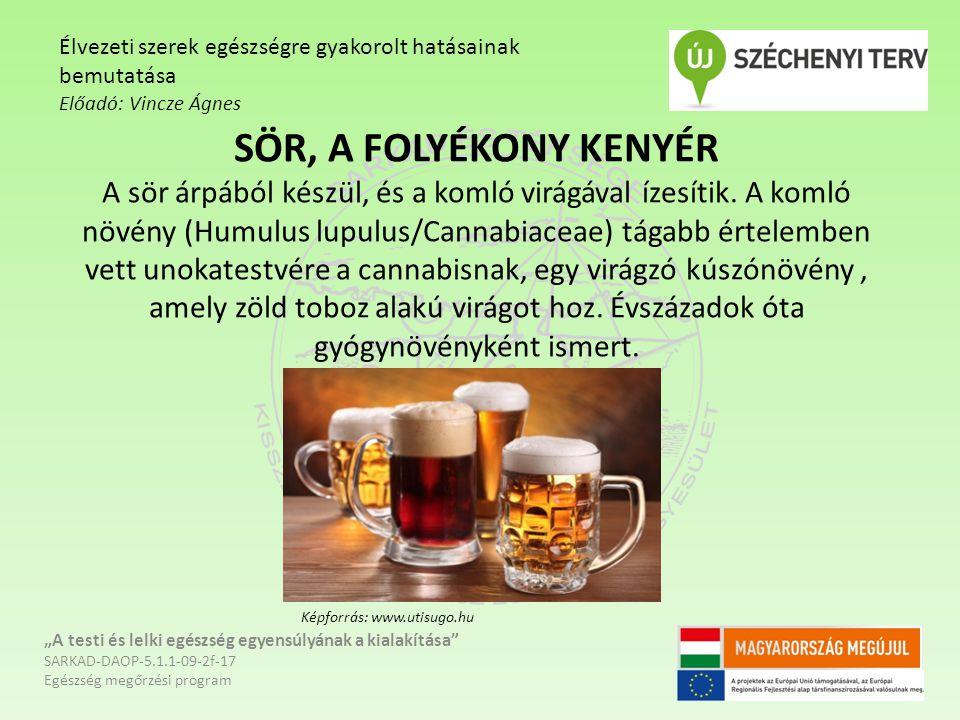 SÖR, A FOLYÉKONY KENYÉR A sör árpából készül, és a komló virágával ízesítik.