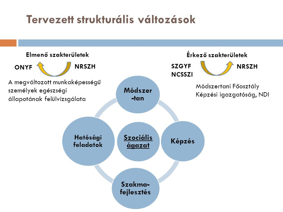 Szociális ágazat Módszer -tan Képzés Szakma- fejlesztés Hatósági feladatok Tervezett strukturális változások Elmenő szakterületek Érkező szakterületek ONYF SZGYF NCSSZI A megváltozott munkaképességű személyek egészségi állapotának felülvizsgálata Módszertani Főosztály Képzési igazgatóság, NDI NRSZH