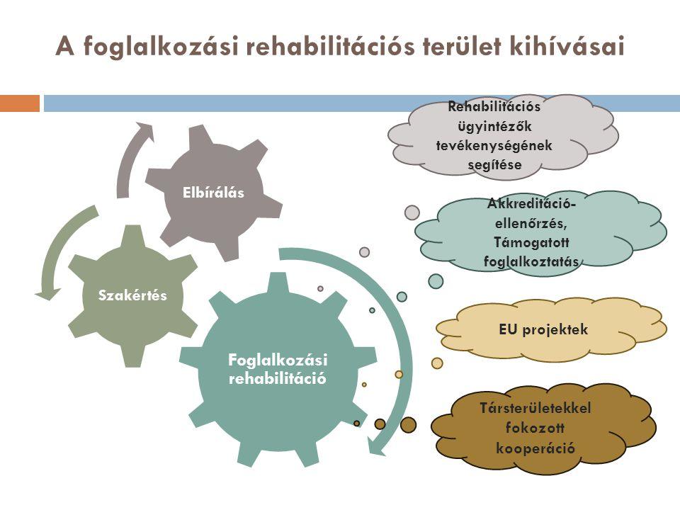 A foglalkozási rehabilitációs terület kihívásai Foglalkozási rehabilitáció Szakértés Elbírálás Rehabilitációs ügyintézők tevékenységének segítése Akkreditáció- ellenőrzés, Támogatott foglalkoztatás EU projektek Társterületekkel fokozott kooperáció