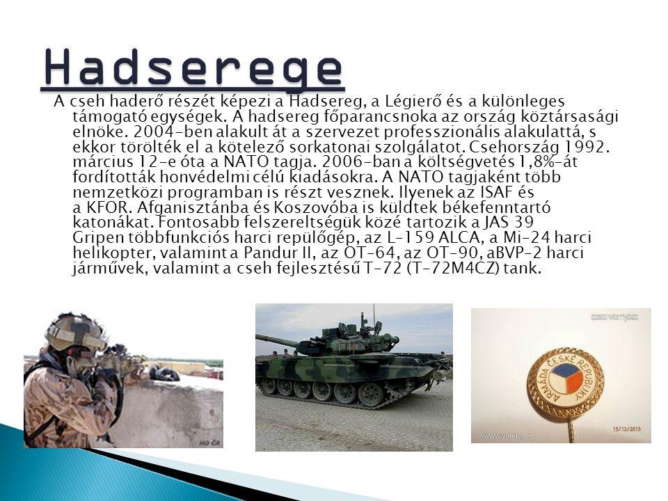 A cseh haderő részét képezi a Hadsereg, a Légierő és a különleges támogató egységek. A hadsereg főparancsnoka az ország köztársasági elnöke. 2004-ben