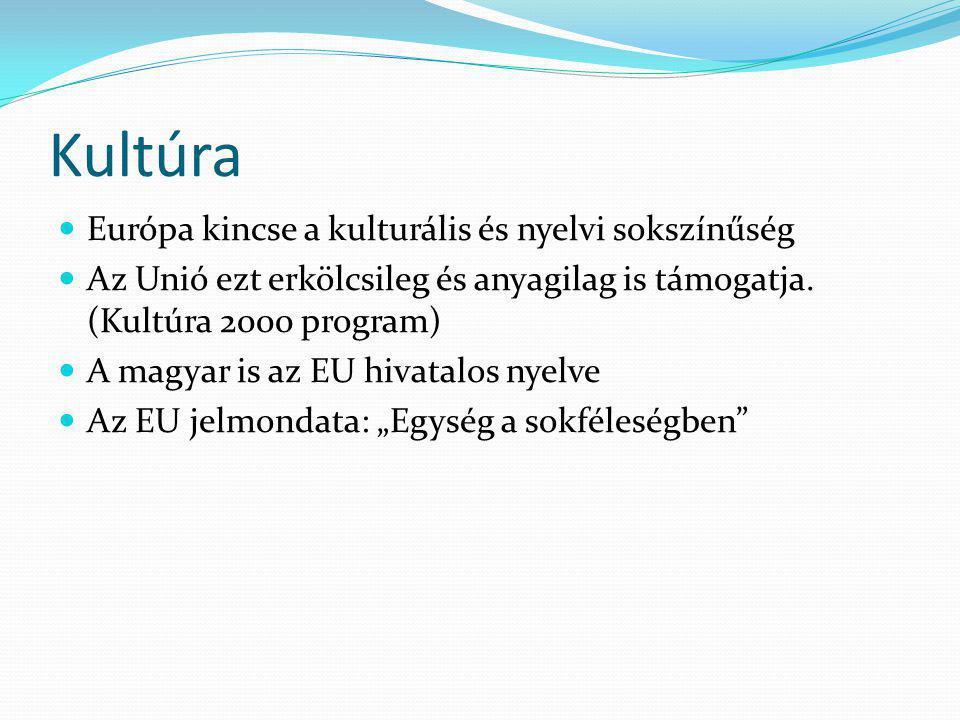 Kultúra Európa kincse a kulturális és nyelvi sokszínűség Az Unió ezt erkölcsileg és anyagilag is támogatja. (Kultúra 2000 program) A magyar is az EU h