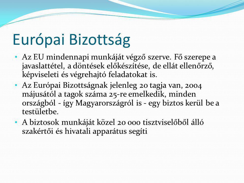 Európai Bizottság Az EU mindennapi munkáját végző szerve.