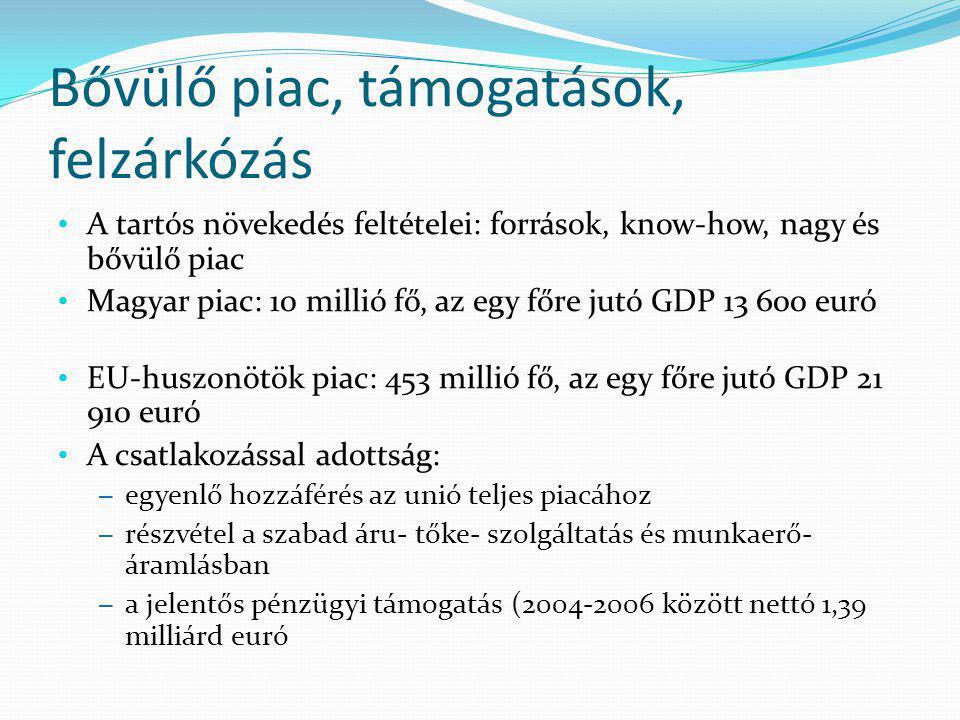 Bővülő piac, támogatások, felzárkózás A tartós növekedés feltételei: források, know-how, nagy és bővülő piac Magyar piac: 10 millió fő, az egy főre ju