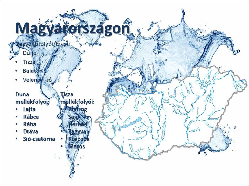 Magyarországon Nagyobb folyói/tavai: Duna Duna Tisza Tisza Balaton Balaton Velencei-tó Velencei-tó Duna mellékfolyói: Lajta Lajta Rábca Rábca Rába Ráb