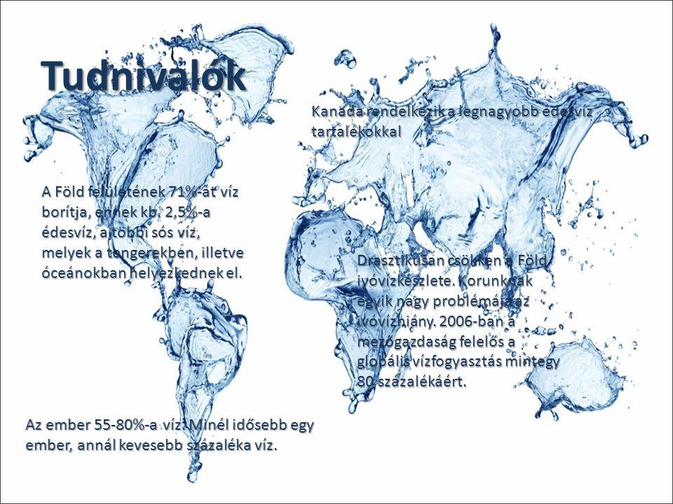 Tudnivalók A Föld felületének 71%-át víz borítja, ennek kb. 2,5%-a édesvíz, a többi sós víz, melyek a tengerekben, illetve óceánokban helyezkednek el.