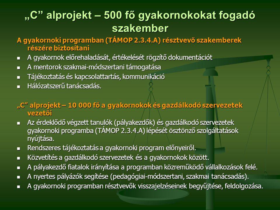 """""""C"""" alprojekt – 500 fő gyakornokokat fogadó szakember A gyakornoki programban (TÁMOP 2.3.4.A) résztvevő szakemberek részére biztosítani A gyakornok el"""