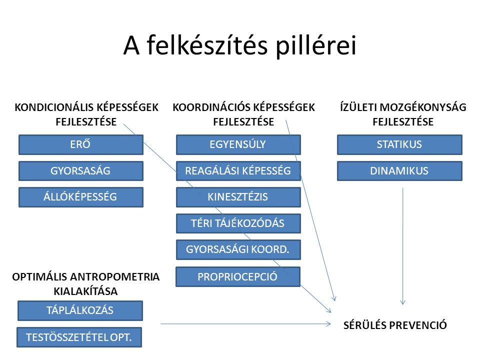 A felkészítés pillérei KONDICIONÁLIS KÉPESSÉGEK FEJLESZTÉSE KOORDINÁCIÓS KÉPESSÉGEK FEJLESZTÉSE ÍZÜLETI MOZGÉKONYSÁG FEJLESZTÉSE ERŐ ÁLLÓKÉPESSÉG GYOR