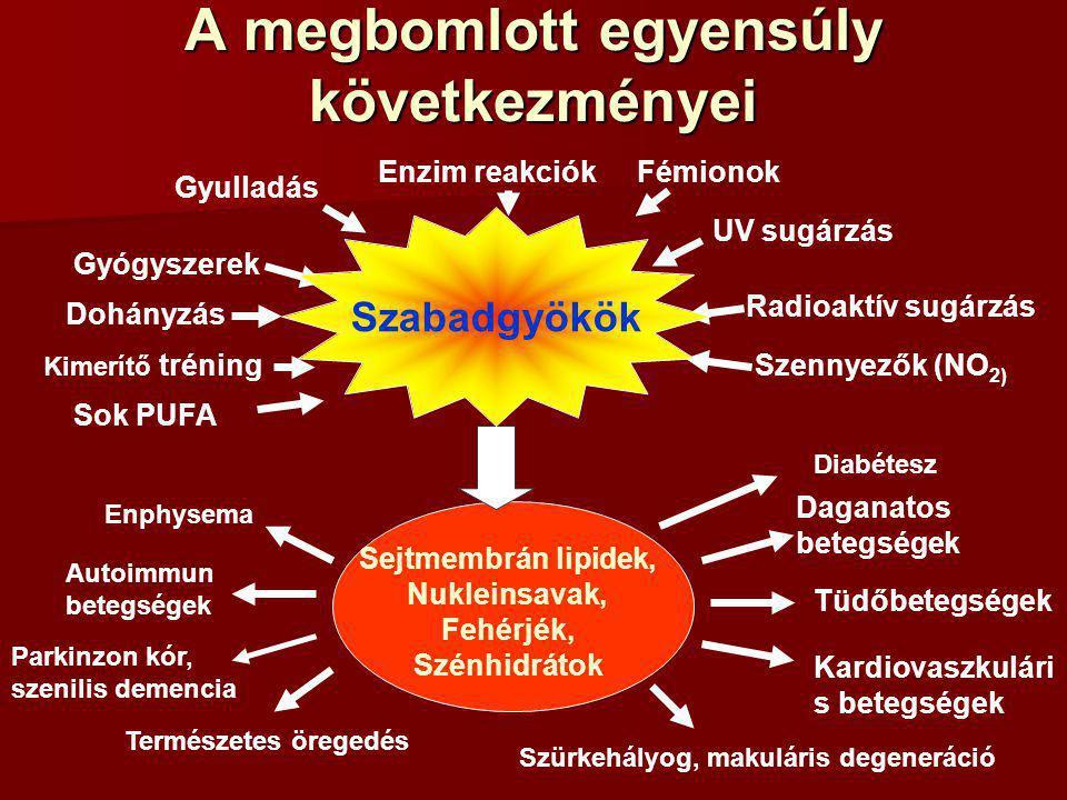 A megbomlott egyensúly következményei Parkinzon kór, szenilis demencia Enzim reakciók Gyulladás Fémionok UV sugárzás Gyógyszerek Dohányzás Kimerítő tréning Radioaktív sugárzás Szennyezők (NO 2) Sok PUFA Sejtmembrán lipidek, Nukleinsavak, Fehérjék, Szénhidrátok Daganatos betegségek Szabadgyökök Enphysema Autoimmun betegségek Természetes öregedés Szürkehályog, makuláris degeneráció Tüdőbetegségek Kardiovaszkulári s betegségek Diabétesz