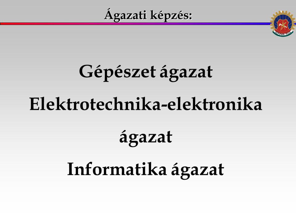 Ágazati képzés: Gépészet ágazat Elektrotechnika-elektronika ágazat Informatika ágazat