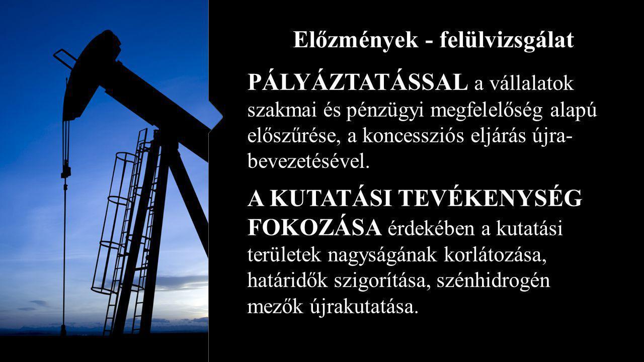 Felelős műszaki vezető Szénhidrogén bányaüzemben egyes speciális bányászati tevékenységek tekintetében külön bányaüzemi felelős műszaki vezető is megbízható.
