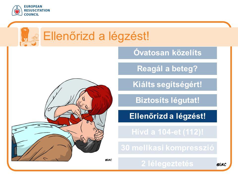 Ellenőrizd a légzést! Approach safely Óvatosan közelíts Reagál a beteg? Kiálts segítségért! Biztosíts légutat! Ellenőrizd a légzést! Hívd a 104-et (11