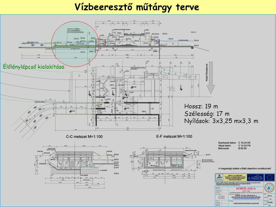Vízbeeresztő műtárgy terve Hossz: 19 m Szélesség: 17 m Nyílások: 3x3,25 mx3,3 m Élőlénylépcső kialakítása