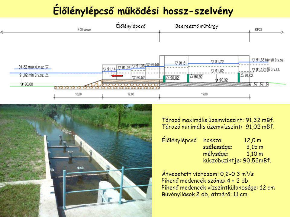 Élőlénylépcső működési hossz-szelvény Tározó maximális üzemvízszint: 91,32 mBf. Tározó minimális üzemvízszint: 91,02 mBf. Élőlénylépcső hossza: 12,0 m