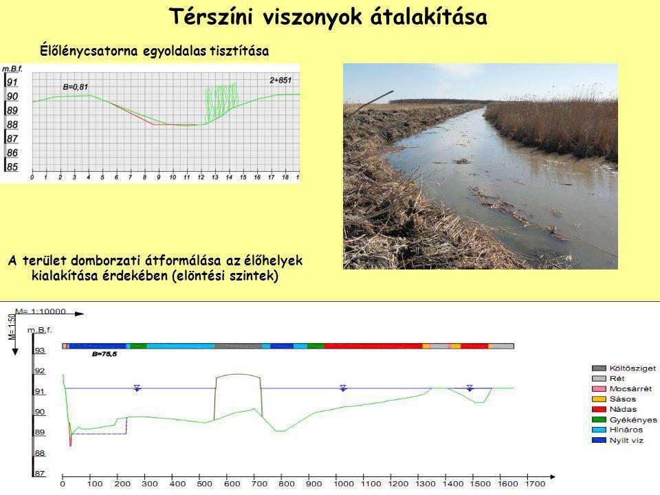 Térszíni viszonyok átalakítása Élőlénycsatorna egyoldalas tisztítása A terület domborzati átformálása az élőhelyek kialakítása érdekében (elöntési szi