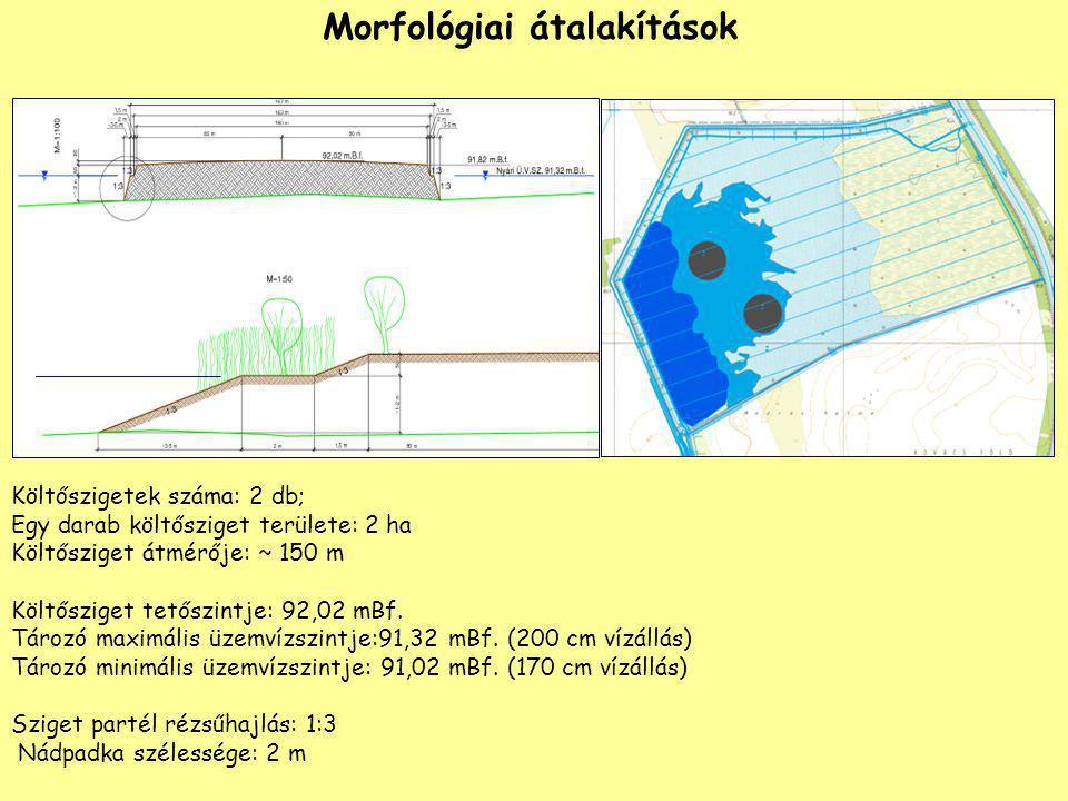 Morfológiai átalakítások Költőszigetek száma: 2 db; Egy darab költősziget területe: 2 ha Költősziget átmérője: ~ 150 m Költősziget tetőszintje: 92,02