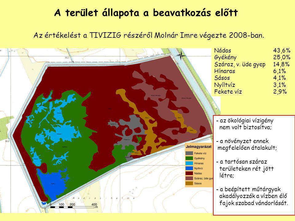 A terület állapota a beavatkozás előtt Az értékelést a TIVIZIG részéről Molnár Imre végezte 2008-ban. Nádas 43,6% Gyékény 25,0% Száraz, v. üde gyep 14