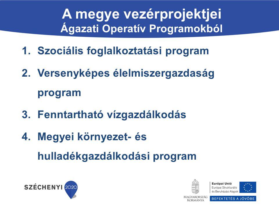 A megye vezérprojektjei Ágazati Operatív Programokból 1.Szociális foglalkoztatási program 2.Versenyképes élelmiszergazdaság program 3.Fenntartható víz