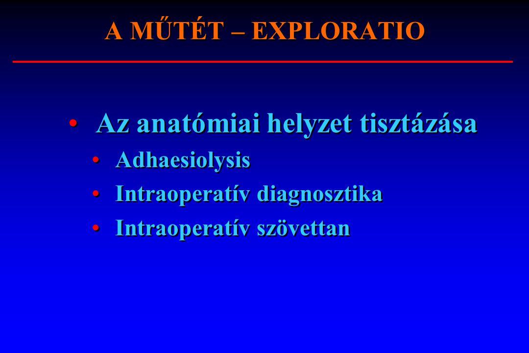 Az anatómiai helyzet tisztázása Adhaesiolysis Intraoperatív diagnosztika Intraoperatív szövettan Az anatómiai helyzet tisztázása Adhaesiolysis Intraop